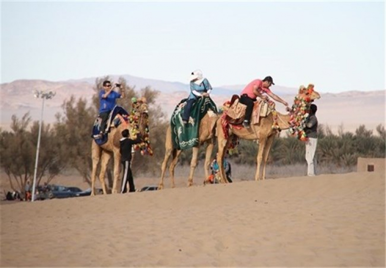 Camel Riding in Ardakan